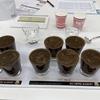 UCCのコーヒー鑑定スキル(中級)セミナーを受講しました