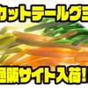 【ゲーリーヤマモト】食べられるワーム?!「カットテールグミ」通販サイト入荷!