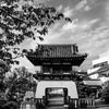 砂町妙久寺の楼門