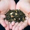 茶葉の保存容器のおすすめベスト5!おしゃれにストックできる人気商品は?