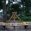 NEPAL13 象の水浴び・象乗り・ジャングル散策 最高にエモいチトワン!!!