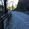 池田山公園界隈