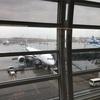 空港は空港でも国際線のあのワクワク感が堪りません!