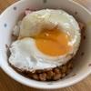 三ツ星いちごのラングドシャ ティラミスケーキ風 目玉焼きご飯 ハンバーグ