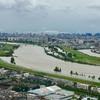 【ラン日記】台風の影響で荒川氾濫…