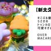 【新大久保】LINEの人気キャラクターすこぶる動くウサギのトゥンカロンが可愛すぎる/over macaron