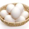 お菓子必要な卵の力!そのすごさとは?