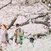 Snapshot ~『桜 2021』 #4