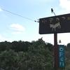 動物に会いに行く(1)『名古屋市守山区・小空カフェ』