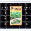 「サラダスティック」をセルトレイで水耕栽培。今回は19株を同時に育てます