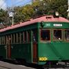 第368列車 「 併用軌道さんぽ・阪堺電気軌道モ161形161号車とオリエント急行殺人事件ラッピングの166号車を狙う 」