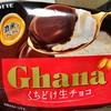 ロッテアイス ロッテ ガーナ くちどけ生チョコ 食べてみました