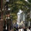 一人でも楽しめる東京の観光スポット6選!厳選しました