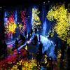 光と音の最新デジタルアート チームラボボーダレスに行ってみた
