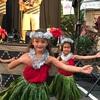 ハレマウマウ Hale mʻaumʻau