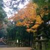 雨と紅葉の奈良さんぽ
