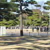 明けましておめでとうございます。一般参賀に行ってきました。(東京旅行その①)
