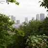 日吉公園(自然の多い高低差のある公園)