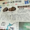 日本には53個の隕石が落ちているし隕石で作った日本刀もあるのだ
