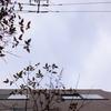 作曲工房 朝の天気