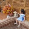 タイ国際航空で行く、子連れバンコク旅行。【機内編】