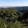 【小学生の体を動かすお出かけ】初めての高尾山。ケーブルカーなし・沢歩き冒険コースで、思った以上のハードな運動に