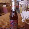 世界一周139日目 ボリビア(48) 〜ウユニの街で休息の一日〜