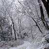氷瀑を見に、七曲り滝へ(その1)有馬温泉~紅葉谷