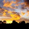 【メルボルン】オーストラリアのビクトリア州、ロックダウンが1週間延長に
