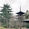 4年ぶりの京都。大学を辞めて留学してよかったと再認識した