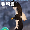 【試し読み】野鳥写真の教科書 (27ページ)