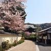 鎌倉・江の島をめざして