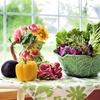 2月17日は「千切り大根の日」 切り干し大根は優れた保存食!