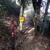 Zinfandel Trail〜Canyon Trail〜Mt.Eden Trail