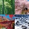 四季を感じられる場所