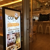 バンコクで猫カフェに行ってみよう!「Cat Up Cafe」BTSサラデーンMRTシーロム駅近く。