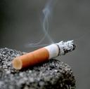 タバコ代だけでも稼いだる!