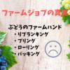 【オーストラリア】【ファームジョブ】ぶどうファームハンドは稼げません!!