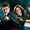 海外の反応「ハリーポッターの作者・J.Kローリングがアニメ「ブラッククローバー」の設定がパクリだと批判