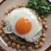 【世界の豆】② ひよこ豆でミャンマーのチャーハン