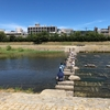 京都 鴨川散歩