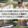 東京からの日帰り旅行におすすめ!TABICAで地元の人と農業やものづくりのユニーク体験をしよう