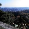 高尾山よりおすすめ!鎌倉の天園ハイキングコース