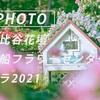 湘南の春:Sony α7c + SEL135F18GM