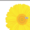 【illustrator】オブジェクトに矢印を合わせても光らない。