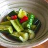 簡単おつまみ、ピリ辛きゅうり!旨辛副菜レシピ