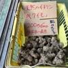 キクイモの季節がやってきました。腸の汚れを大掃除して健康になりましょう!
