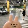 【体験談】セブのメトロスーパーでiPadの盗難に遭いましたΣ( ̄ロ ̄lll)ガーン