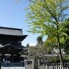 あさイチで熊本の阿蘇神社社殿再建に支援できる動画が紹介されたので拡散したい