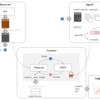 pythonで強化学習のモデルフリーの手法、学習法・コードまとめ【機械学習】
